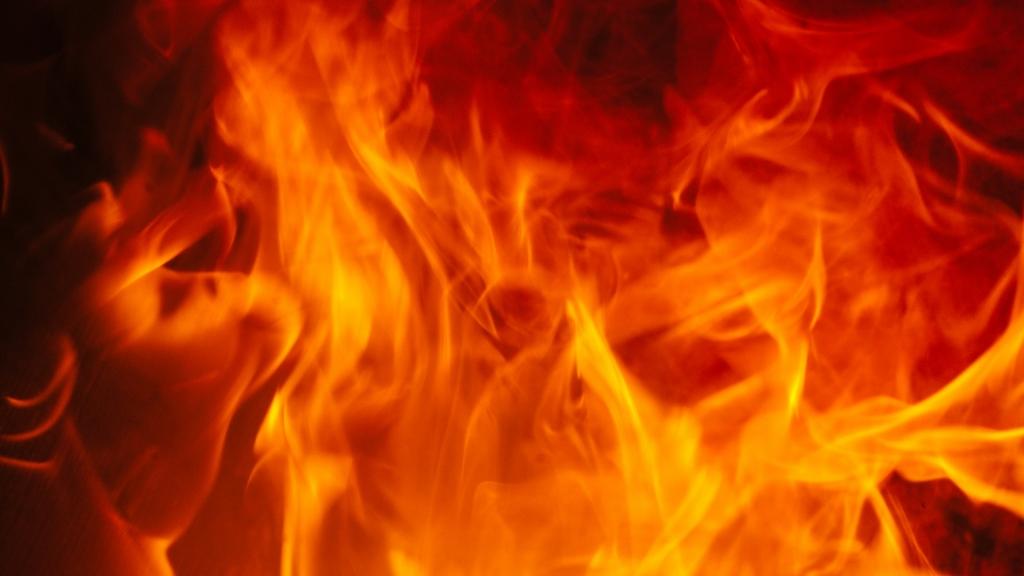 Der Dünndarm befindet sich im Element Feuer